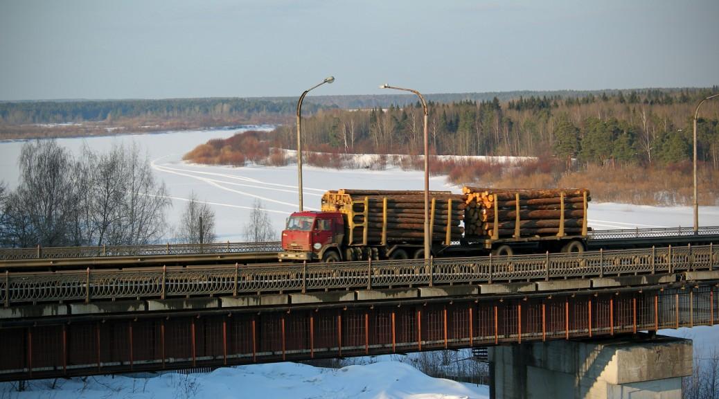 Лес в Кировской области рубят вовсю — такие лесовозы едут нескончаемым потоком.